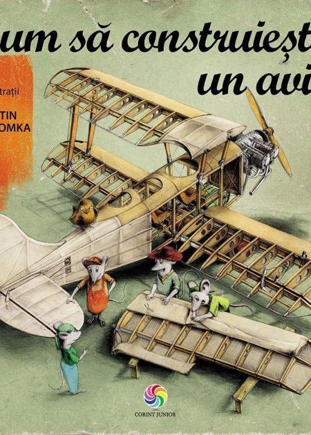 Cum-sa-construiesti-un-avion-povesti-ilustrate-carti-copii-editura-corint-junior