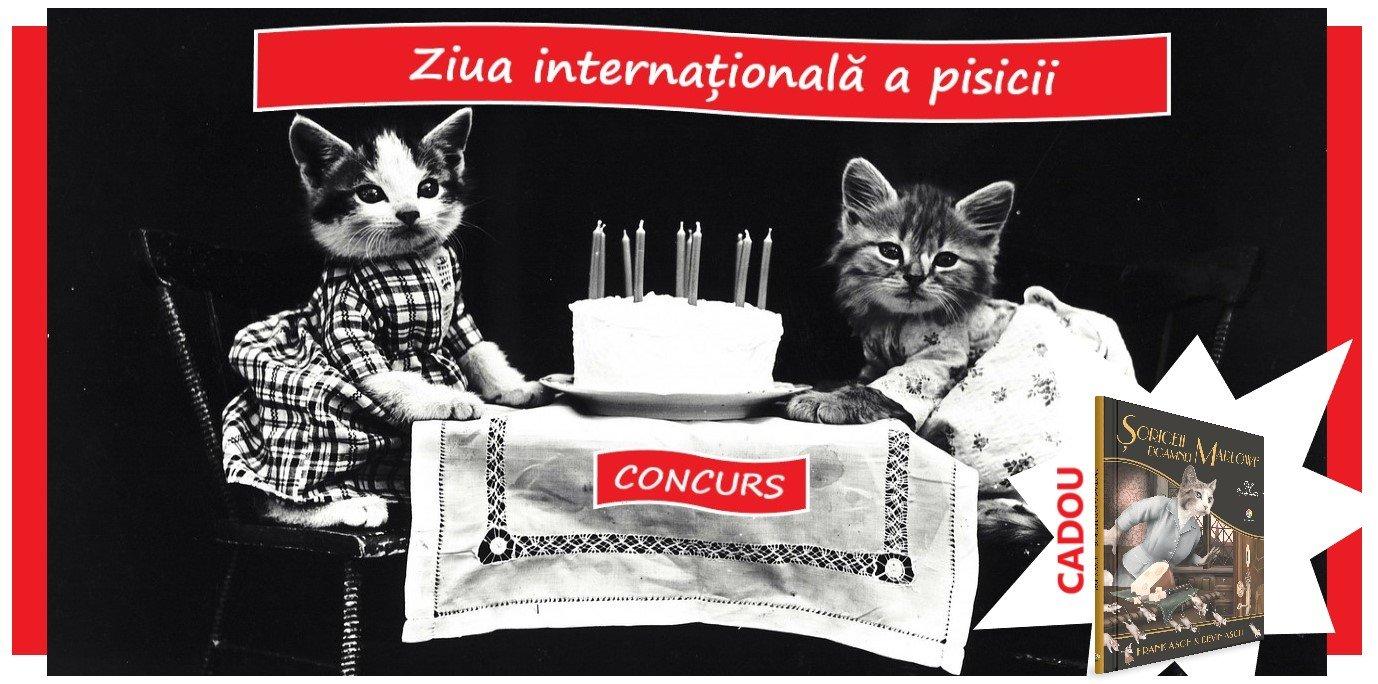 ziua-internațională-a-pisicii